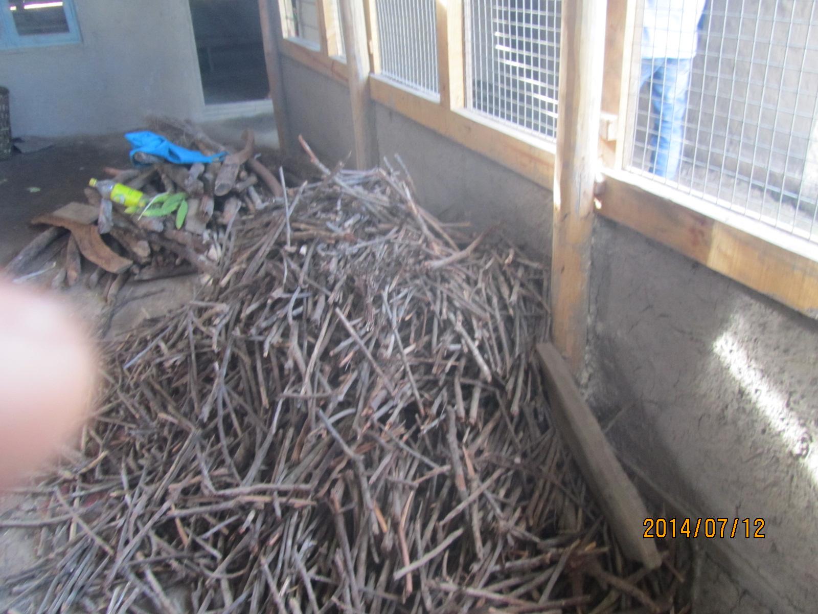 biomas-twixt_3675